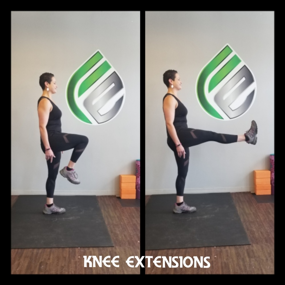 Knee Extensions